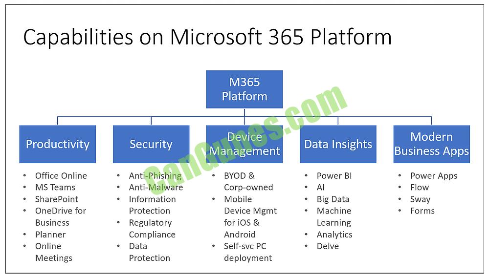 Microsoft 365 Platform