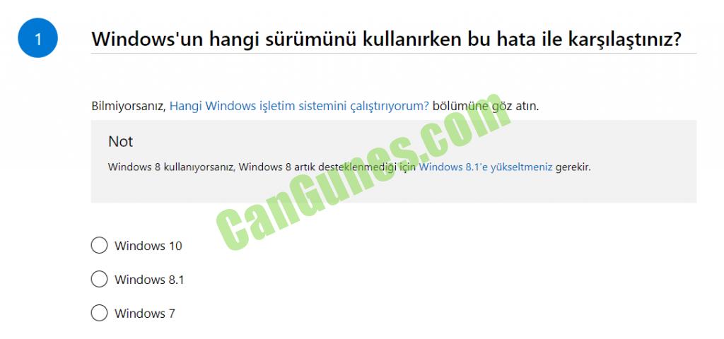 Windows Update Online Sorun Giderici