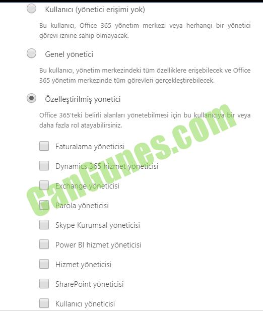 Office 365 Yetkiler