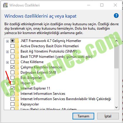 internet explorer kaldırma - windows özellikleri